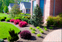 Landscaping Service Toronto
